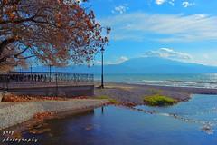 Warmth of winter... (gregtz) Tags: sea seaside sky clouds colours tree reflection leaves blue nafpaktos nature nikon θάλασσα ναύπακτοσ νερό αντανάκλαση δεντρο συναισθήματα σύννεφα χρώματα χειμώνασ φύλλα