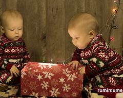 Twins Christmas Photo Shoot #24 (rumimume) Tags: potd rumimume 2016 niagara ontario canada photo canon 80d sigma twins baby christmas photoshoot festive holiday onesey