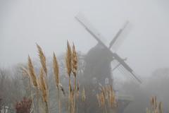 Windmill in the mist (Infomastern) Tags: malmö slottsmöllan slottsparken dimma fog väderkvarn windmill exif:model=canoneos760d geocountry camera:make=canon exif:isospeed=100 camera:model=canoneos760d geostate exif:aperture=ƒ50 geolocation exif:lens=efs18200mmf3556is geocity exif:focallength=80mm exif:make=canon
