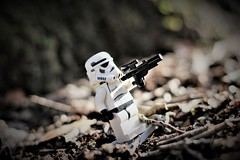 Storm Trooper (beckyj351) Tags: starwars stormtrooper sticks white black tree