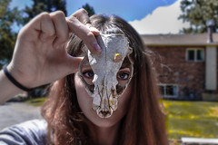 (Taran W) Tags: skull head face people portrait portraiture eyes hand outdoors light shadows