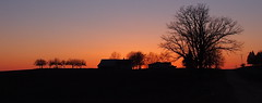 Orchard  on Ridge After Sunset (nelhiebelv) Tags: sunset orchard ridge gratiotcounty newhaven township silhouette