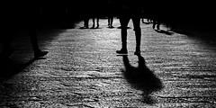 [ I seguaci a debita distanza - Followers at a safe distance ] DSC_0184.5.jinkoll (jinkoll) Tags: shadow street people feet bnw bw blackandwhite reflection bricks old town city bologna crowd man step walk walking