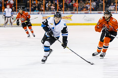 "Missouri Mavericks vs. Wichita Thunder, February 3, 2017, Silverstein Eye Centers Arena, Independence, Missouri.  Photo: John Howe / Howe Creative Photography • <a style=""font-size:0.8em;"" href=""http://www.flickr.com/photos/134016632@N02/32591261681/"" target=""_blank"">View on Flickr</a>"