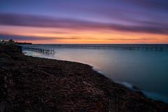 March (Giacomo Gabriele) Tags: sky sea sunset water blue night light clouds italy pier seascape longexposure zeiss sicily marsala alga carlzeiss