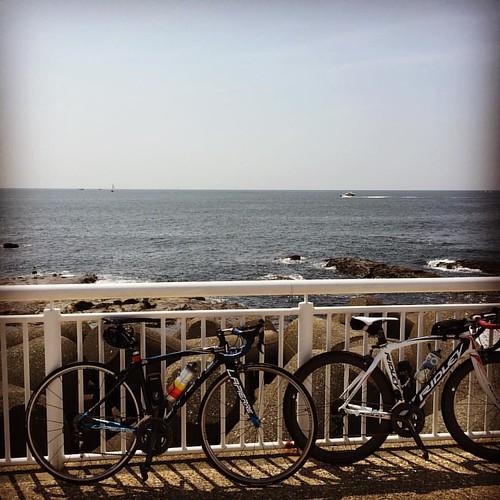 暑いけど気持ちいい!江ノ島へはひさびさに来ました。