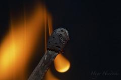 Burning match NO PHOTOSHOP (Hendebak) Tags: macro fire nice nikon awesome burn match nikkor epic d300
