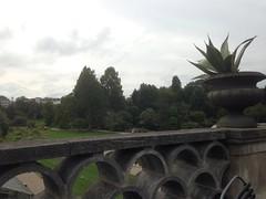 253/365 Botanical Garden Terrasse