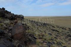 30095296 (wolfgangkaehler) Tags: old animal animals rock asian ancient asia desert mongolia centralasia petroglyph gobi blackmountains petroglyphs ibex mongolian gobidesert southernmongolia