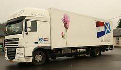 DAF XF DA Flowers Holland Truck Art Frank Hilton 30102015 022 (Frank Hilton.) Tags: frankhilton30102015 fodenphotoserfphotos aecphotos scammellphotosatkinsonphotos bedfordphotos classictruckphoto sraredennisphotos