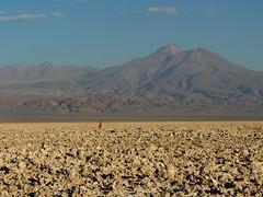 Volcn Tumisa - 5658 mts (Mono Andes) Tags: chile volcano altiplano salardeatacama volcn volcanoe punadeatacama regindeantofagasta reservanacionallosflamencos volcntumisa