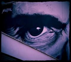2 novembre 1975 (Colombaie) Tags: streetart roma bar case bn morte artistica ameliepoulain occhio 1961 oper lotti casale anniversario storia 2015 ricordo pigneto 40 pierpaolopasolini omicidio impero baracche accattone urbanistica necci assassinio viabracciodamontone lottizzazione bellitalia ragazzidivita perozzi mauropallotta maupal viafanfulladalodi nerorealismo