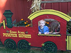 """Paul and Inde in the Sonny Acres Pumpkin Express • <a style=""""font-size:0.8em;"""" href=""""http://www.flickr.com/photos/109120354@N07/22856673729/"""" target=""""_blank"""">View on Flickr</a>"""