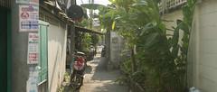 _MG_1195 (playwhyyza) Tags: travel canon purple bangkok thai  600d    kissx5
