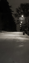 The Long Snow Road Noir