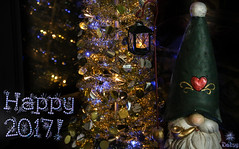 Happy New Year!!! :-) (Dotsy McCurly) Tags: happy new year 2017 christmas tree holiday gnome red lavender led lights canoneos5dmarkiii dof bokeh nj adobe photoshop
