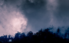 I tried to Catch the Fog but I Mist (mikbanerjee) Tags: mikbanerjee mik madras mountain hills house home heavenly horizon canon1300d canon canondslr canonrebelt6 cinematic cinemascope chennai nightsky night amateurphotography beginner 55250mmisiikitlens india indiatravel indiatour indian cloudy clouds storm stormy light lightroom dark sky clear landscape nature beauty