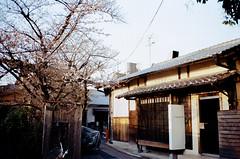 Kyoto 京都西陣(にしじん) (mookio 阿默) Tags: contax t2 kyoto 京都 西陣 にしじん efiniti uxi 200