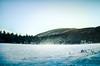 Snowy Field (dorianborovac) Tags: croatia snow outdoor pine trees field winter landscape europe hill nikon d5100 ogulin sky