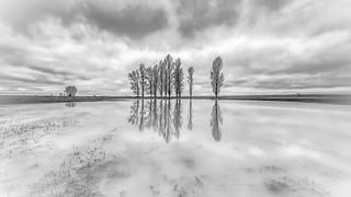 Espejo de invierno
