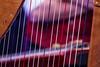 """XWU16_161224_01 (c) Wolfgang Pfleger-3973 (wolfgangp_vienna) Tags: harfonie stubenmusik volksmusik ö3 hitradio weihnachtswunder """"weihnachtswunder"""" christmastime innsbruck tirol tyrol austria österreich weihnachten mariatheresienstrase anna säule event radiostation annasäule """"serious request"""" hitradioö3 seriousrequest ö3weihnachtswunder"""