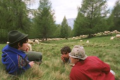 il riposo (giancarlo rado) Tags: pastori transumanza pecore gregge sheperd sheep flock italiansheperds nordest trentino veneto showcase lagorai sheperds alpi alps carlzeiss foto italy travell people workingpeople analog associazionedeipastorideltriveneto picturespeopleitaly
