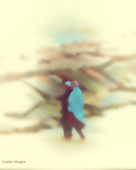 A walk along the beach... (elle Q1) Tags: beach female figures walking meditative solitary pair boulders pilings sea sand blue shawl dreamy moody atmospheric romantic lost blur motion