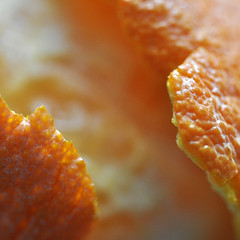 Peeled Back (magaroonie) Tags: macromondays itsapeelingtome clementine