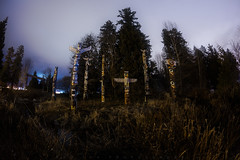 Totem Night (Bun Lee) Tags: bunlee bunleephotography canada clouds fisheye nightskies nightscapes stanleypark totem vancouver wideangle yvr