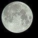 Moon031217