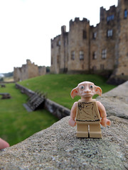...this is Dobby's home now, Miss (diedintragedy) Tags: lego harrypotter elf alnwick northumberland minifig dobby alnwickcastle legominifigure houseelf legoharrypotter legodobby legointhewild dobbyminifigure adventuresofahouseelf legohouseelf