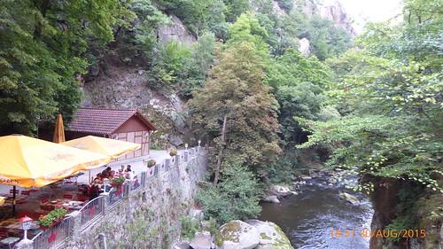 Wanderung von Treseburg durchs Bodetal nach Thale (18)