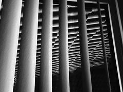 vertically horizontal (achromono) Tags: blackandwhite bw monochrome lines vertical horizontal mono pattern toycamera lofi form chinon repeating powershovel harinezumi zumi achromatic sooc superheadz toydigital digitallofi toydigi digitalharinezumi degihari digihari monochromehard achromono harinezumibw