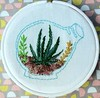 "Succulent Mini Hoops • <a style=""font-size:0.8em;"" href=""http://www.flickr.com/photos/29905958@N04/21052325808/"" target=""_blank"">View on Flickr</a>"