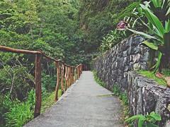 Follow the path... (Laury Volcn.) Tags: verde venezuela caminos mrida