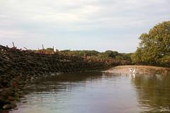 The wrecks of Garden Island - DOROTHY H. STERLING (mickyj_photos) Tags: gardenisland