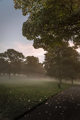 October 20, 2015 - 24.0-105.0 mm f-4.0 - 2 of 14.jpg (Blu Brick) Tags: park morning autumn mist lake tree nature leaves landscape ir early nikon october experimental zoom unitedkingdom leeds lakes bluesky nopeople d750 grading roundhaypark roundhay fakeir sigmalens yourkshire