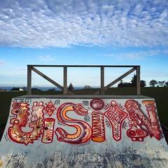Brockville Halfpipe #1 (ViSiON (NZ)) Tags: streetart graffiti vision tic graffitiart talkischeap burga nzstreetart dunedingraffiti dunedinstreetart nzgraffiti nzgraffitiart dunedingraffitiart streetartdunedin