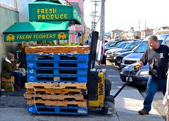 Noriega Produce, pallets, truck driver, (David McSpadden) Tags: sanfrancisco street pallets truckdriver noriega noriegaproduce
