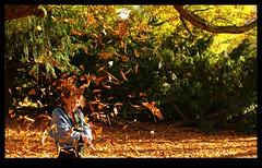 ETEE1740 bis (Leopoldo Esteban) Tags: autumn brussels automne colombia belgium belgique bruxelles otoo bruselas belgica schaarbeek schaerbeek colombie josaphat leopoldoesteban