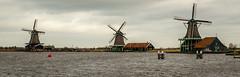 _DML1447 (duncen.mcleod) Tags: windmill ren marken zaanseschans molens paardvanmarken oudehuisjes