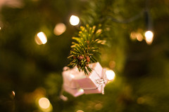 merry christmas [explored] (-j0n4s-) Tags: flickr art nature color canon canon70d canon50mm bokeh bokehlicious dof tree christmas xmas christmastree xmastree present 2016 lights green pink yellow