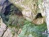 Škocjan-barlang kijárata (ossian71) Tags: slovenia slovenija szlovénia természet nature tájkép landscape škocjan barlang cave