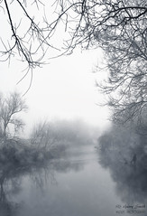 River Trent, Wolseley (wildlife_photo) Tags: wolseley staffordshire wildlife trust cannock garry smith canon 7dii eos river trent winter fog morning landscape