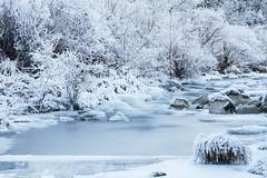 Río Salazar helado (LuigiCarluti) Tags: salazar nieve hielo navarra frio