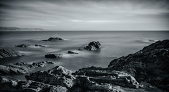 Songbird... (Go placidly amidst the noise and haste...) Tags: looe places hannaforepoint hannafore southwest westcountry cornwall mono blackandwhite longexposure seascape cornishharbour