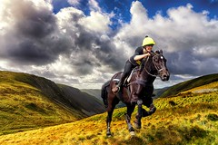 Galloping on the hills. (bainebiker) Tags: horse galloping valley mountain sky clouds canonef24mmf14liiusm elanvalley powys walesuk