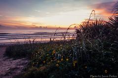 Flagler Beach Morning (corran105) Tags: flaglerbeach beach longexposure morning dawn sunrise florida atlantic flagler palmcoast outdoor landscape color colorful vsco vscofilm scenic a1a lon