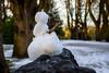 Kleiner Schneemann (andruare) Tags: little rombergpark snow deutschland germany dortmund snowman schnemann klein kleiner