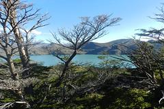Parque Nacional Torres Del Paine / Chile (CarolinaCalquin) Tags: carolina calquin fotos photos puerto natales region magallanes patagonia chilena chile travel viajes turismo parque nacional torres del paine lago lake